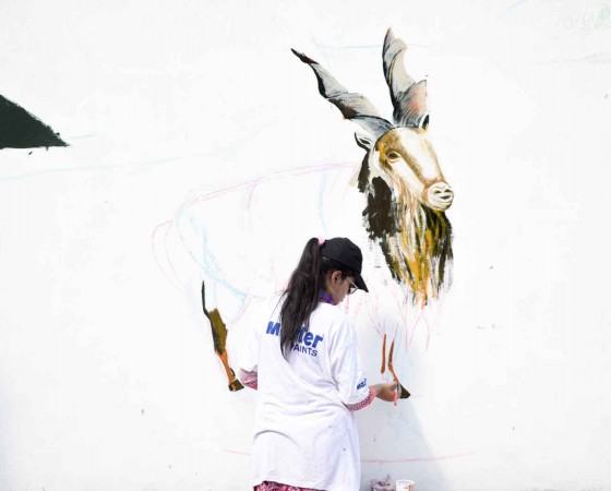 Street artists depict diversity, colours on Lahore walls